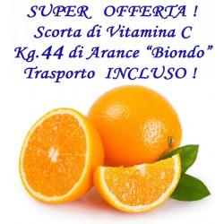 """Kg. 44 di Arance """"BIONDO"""" con TRASPORTO INCLUSO"""