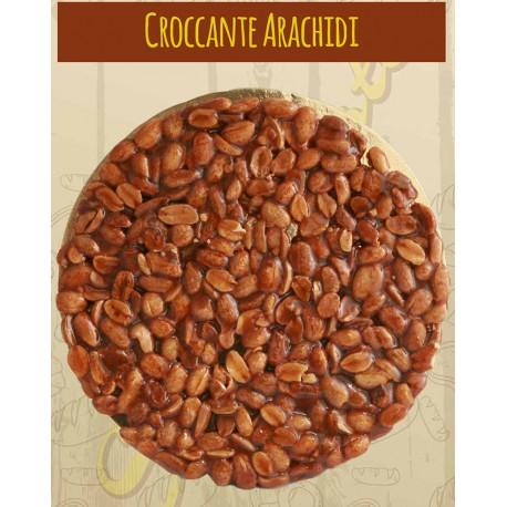 TORTA CROCCANTE ARACHIDI CASERECCI - gr. 300