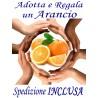 ADOTTA e REGALA UN ARANCIO - SPEDIZIONE INCLUSA