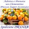 PRENOTA e ADOTTA Kg.48 di CLEMENTINE - TRASPORTO INCLUSO