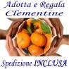 ADOTTA o REGALA Kg.9 di CLEMENTINE - TRASPORTO INCLUSO