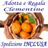ADOTTA o REGALA Kg.25 di CLEMENTINE - TRASPORTO INCLUSO