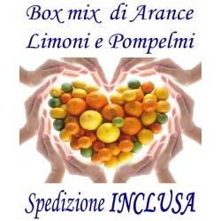 Box Mix Kg.14 di Agrumi: ARANCE, LIMONI e POMPELMI - TRASPORTO INCLUSO