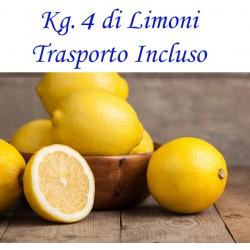 Kg. 4 di LIMONI di Corigliano Calabro - Trasporto INCLUSO