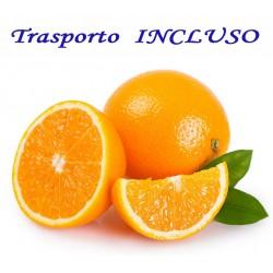 Arance BIONDO Tardivo con Trasporto INCLUSO