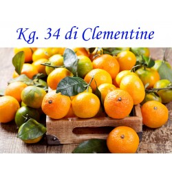 Kg. 34 di Clementine di Corigliano-Rossano - Calabria