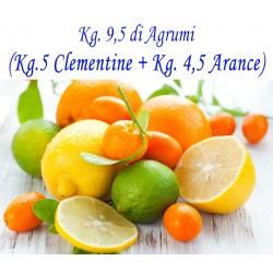 Kg. 9,5 di AGRUMI di cui Kg. 5 di CLEMENTINE E Kg. 4,5 di ARANCE