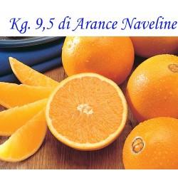 Kg. 9,5 di Arance Naveline/Washington  di Corigliano-Rossano - Calabria