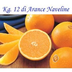 Kg. 12 di Arance Naveline/Washington di Corigliano-Rossano - Calabria