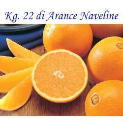 Kg. 22 di Arance Naveline/Washington di Corigliano-Rossano - Calabria