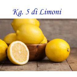 Kg. 5 di LIMONI di Corigliano-Rossano - Buccia Edibile